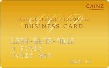 カインズA.G.P.カード
